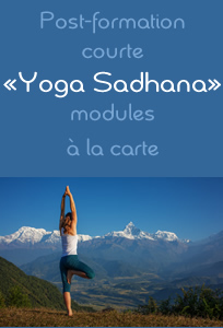 Post-formation Yoga Sadhana - école de yoga Yogamrita