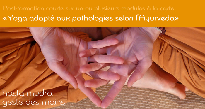 Post-formation- yoga adapté aux pathologies courantes selon l'Ayurveda - école de yoga Yogamrita