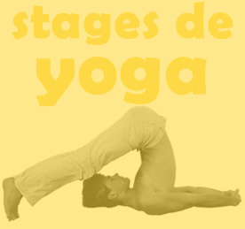 stages de yoga Yogamrita